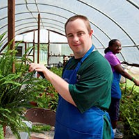 Photo: Person with a disability working in a greenhouse